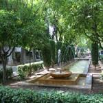 Jardin Cathédrale Palma Majorque